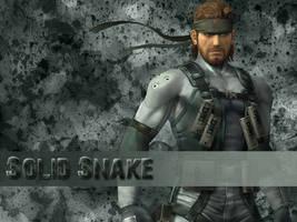 Solid Snake by Koei-Warrior