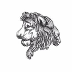 Lion Hands