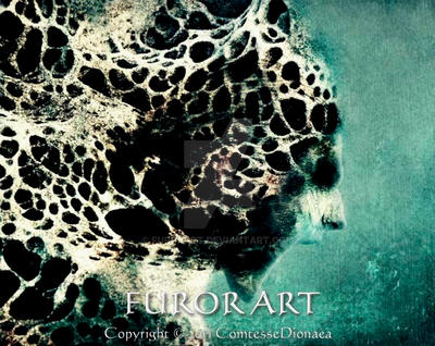 Porous by FurorArt