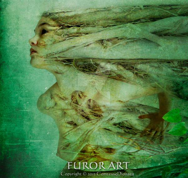 Silva by FurorArt
