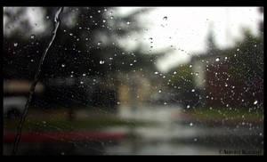 Watchin the Rain 2