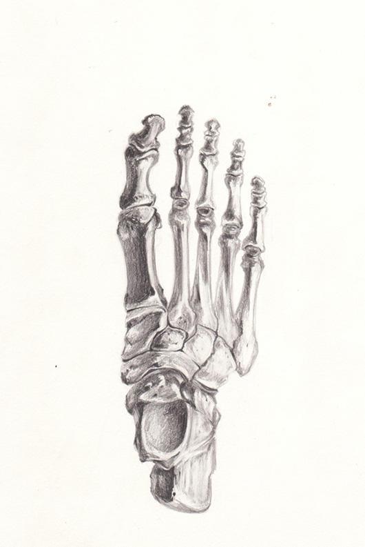 Skeleton Foot By Anniegiturguns On Deviantart