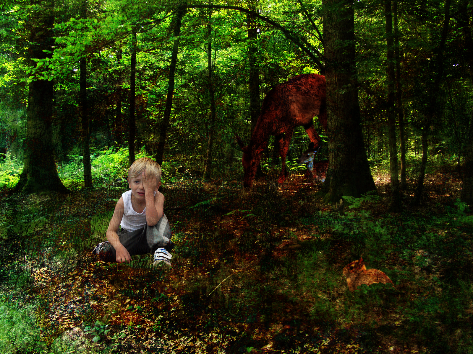 Essay lost in the forest