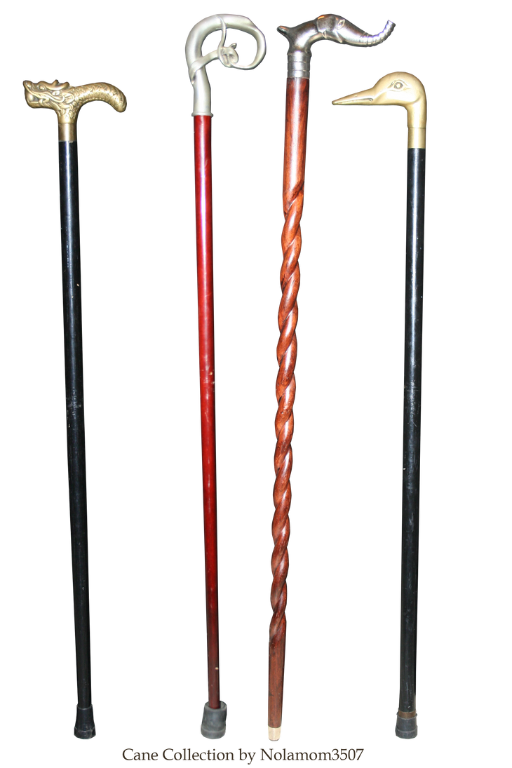 Cane Collection by Nolamom3507