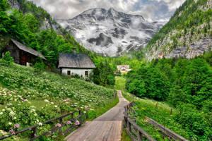 Alpine Spring Premade Background
