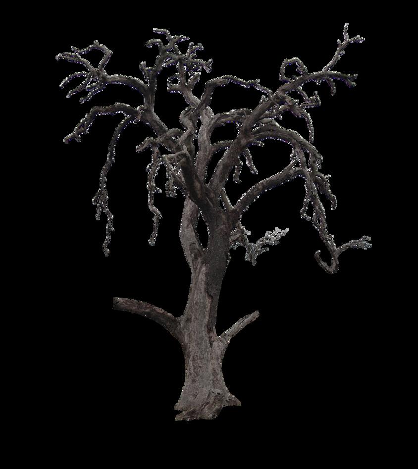 Spooky Tree by Nolamom3507