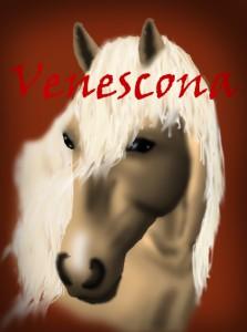 Venescona's Profile Picture