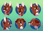 The many faces of Sintel by FigoFox