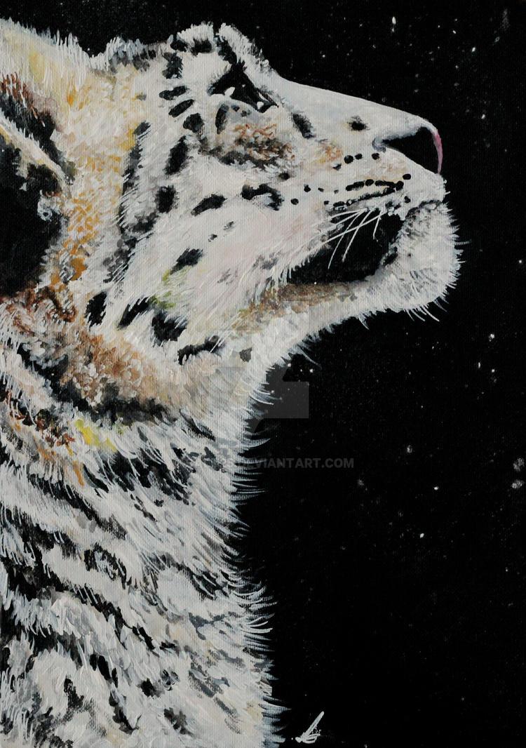 Snow Leopard gaze by salt25