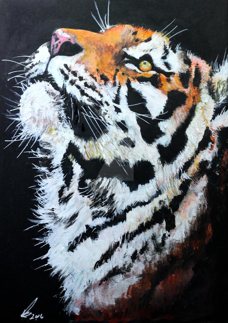 Tiger watch by salt25