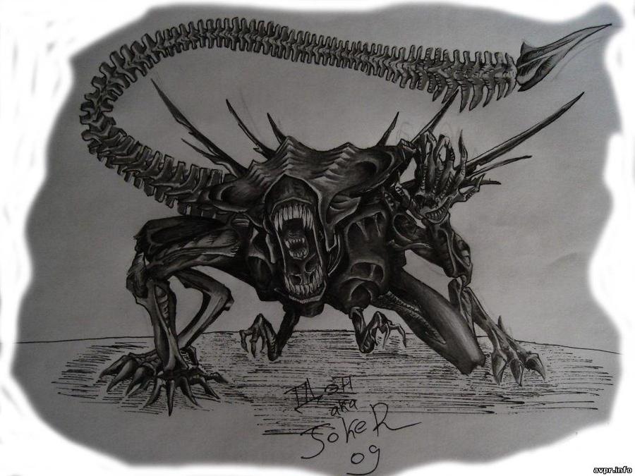 Xenomorph Queen Facehugger Xenomorphs