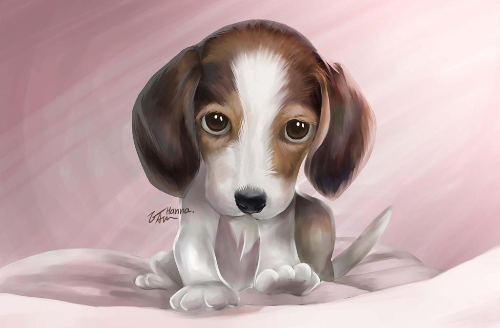 a puppy by hanna-Aris