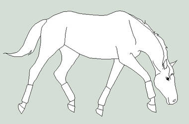 mare trot lineart