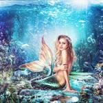 Mermaid waters