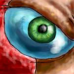 Eye of..choas