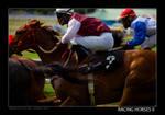 Racing Horses II