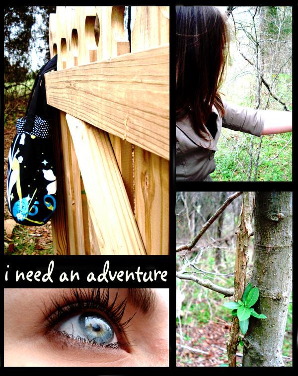The Adventure. by darkbluetori