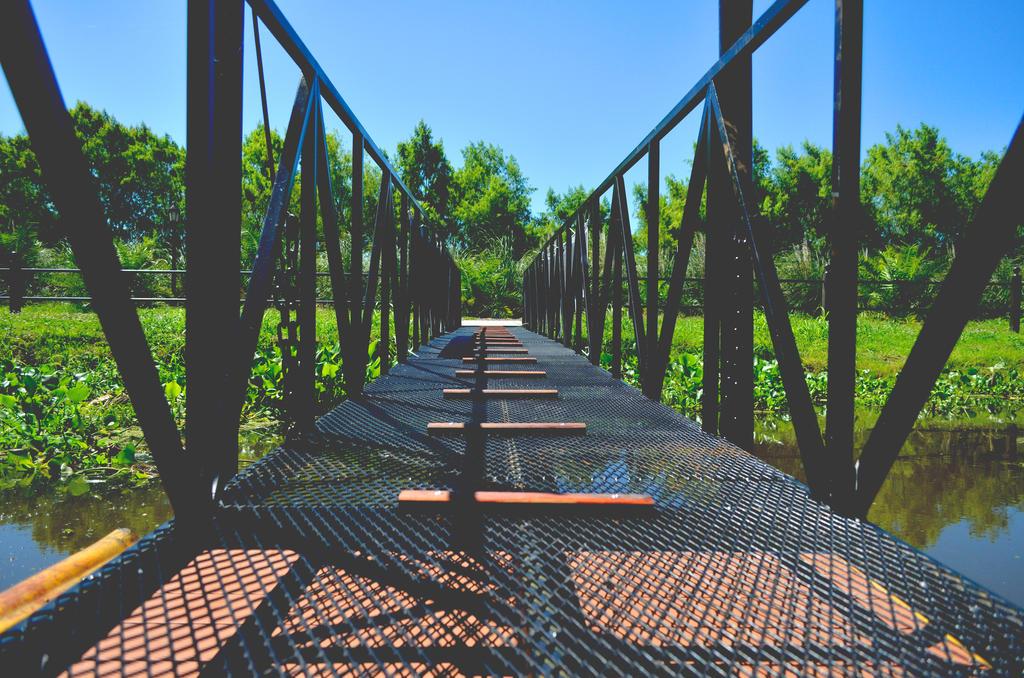 The Bridge . by exteban