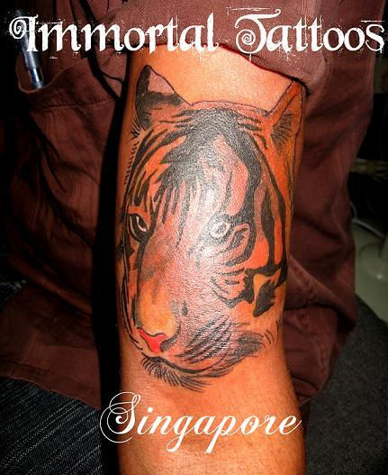 tattoo tiger. Tiger Face Tattoo Tiger Tattoo
