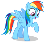 Dashie curiously looking down