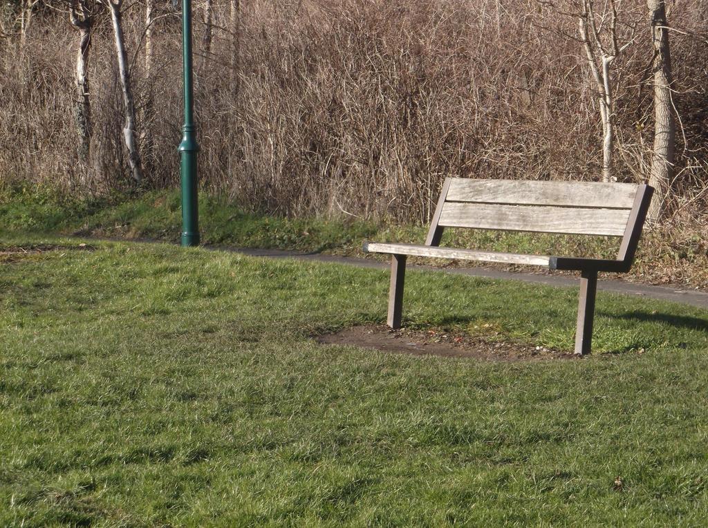 Lonely bench by PsychicHexo
