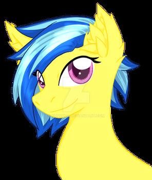 Koa-Pony
