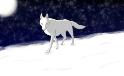 White wolf by Crownverry
