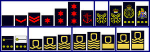 Royal Naval Volunteer Reserve and Sea Cadet Corps