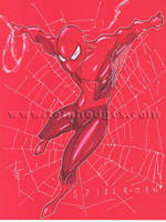 Spider-Man 40 by Hodges-Art