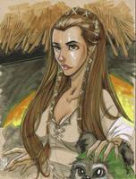 Princess Leia: Ewok Village