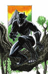 Black Panther Commission