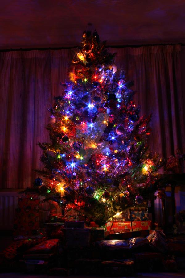A Magical Christmas by wackymanda