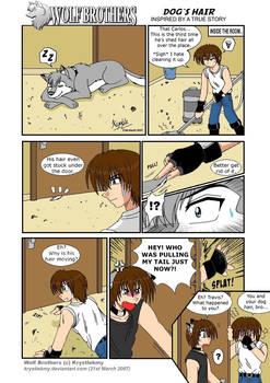 Wolf Brothers Paromanga Dog's Hair (True Story)