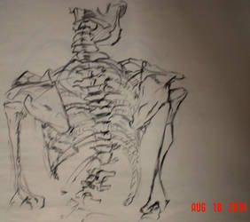 spine by art-sir