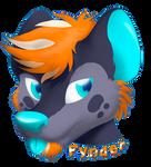 T.- Badge Fynder