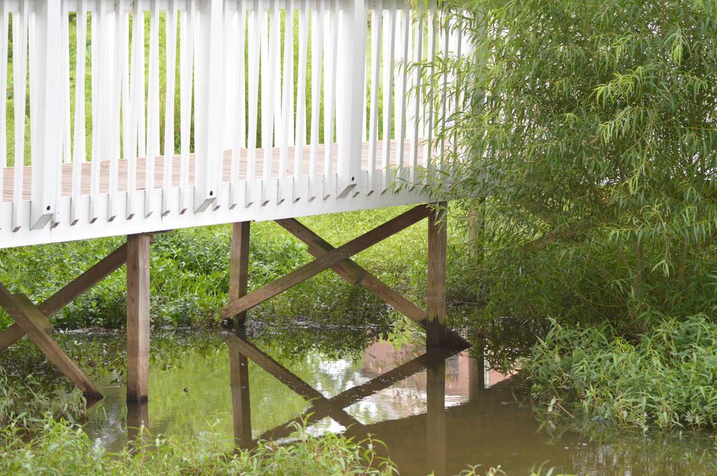 Bridge Over the Creek by ArekkusuSan