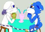 Gatomon y Veemon