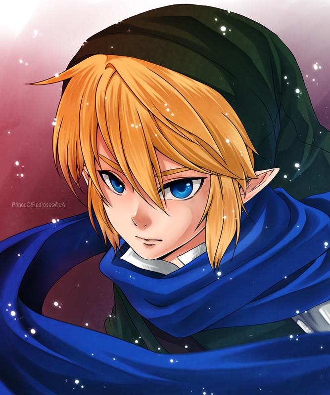 :Link: Hyrule Warriors by PrinceOfRedroses on DeviantArt