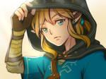 [ LOZ: BOTW ] Link doodle