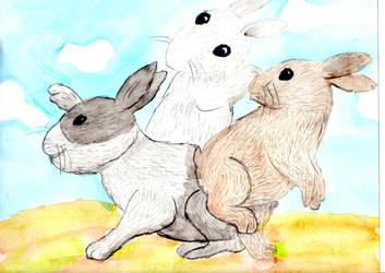 Rabbits by RikaSigma