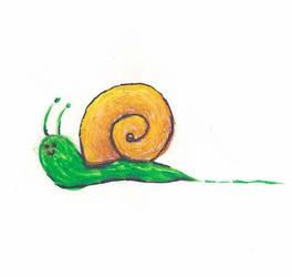 Snail by RikaSigma
