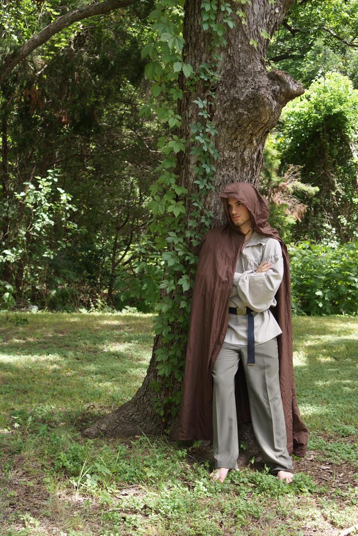 Lone Wanderer by JoyfulStock