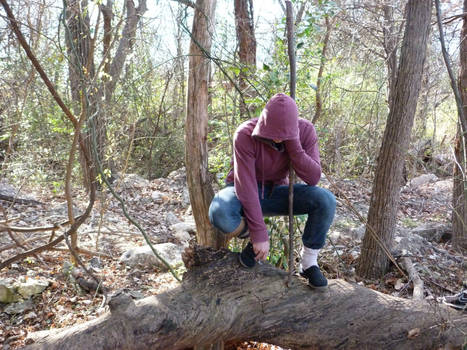 Crouched in the Forest