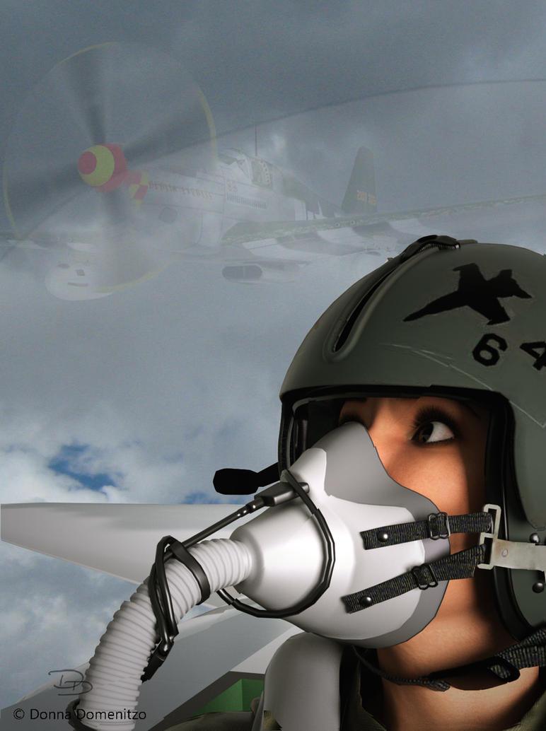 Valkyrie 6, A Memorial Day Flight by donnaDomenitzo