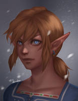 Link - Breath of the Wild by Anadia-Chan