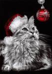 Christmas Kitty. by dreamarian