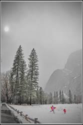 Snowball fight Yosemite