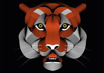 Tigr by Destiiny1