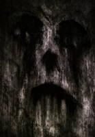 Skull Face Close by WeirdDarkness