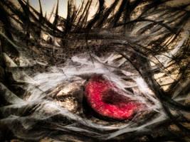 Red Eye Close-up by WeirdDarkness